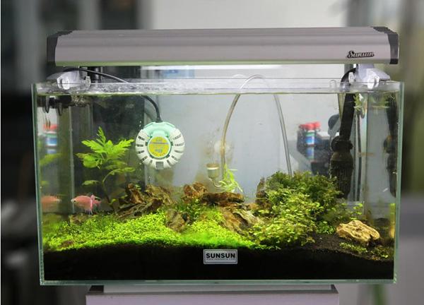 Sunsun mini- tanque de peixes de aquário aquecedor automático aquecedores anti- explosão para betta