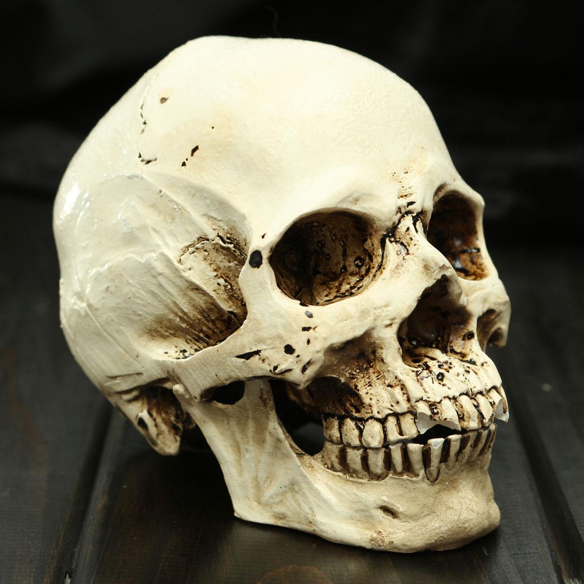 할로윈 작은 인간 해골 복제 무서운 끔찍한 할로윈 장식