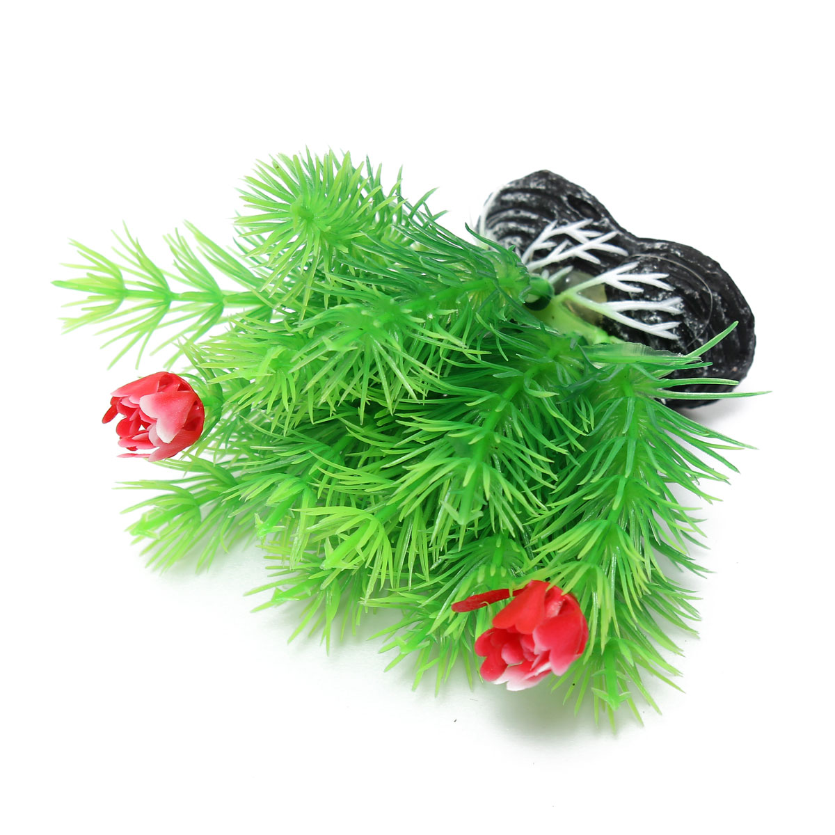 Aquarium decorations online canada aquarium plants for for Aquarium decoration online