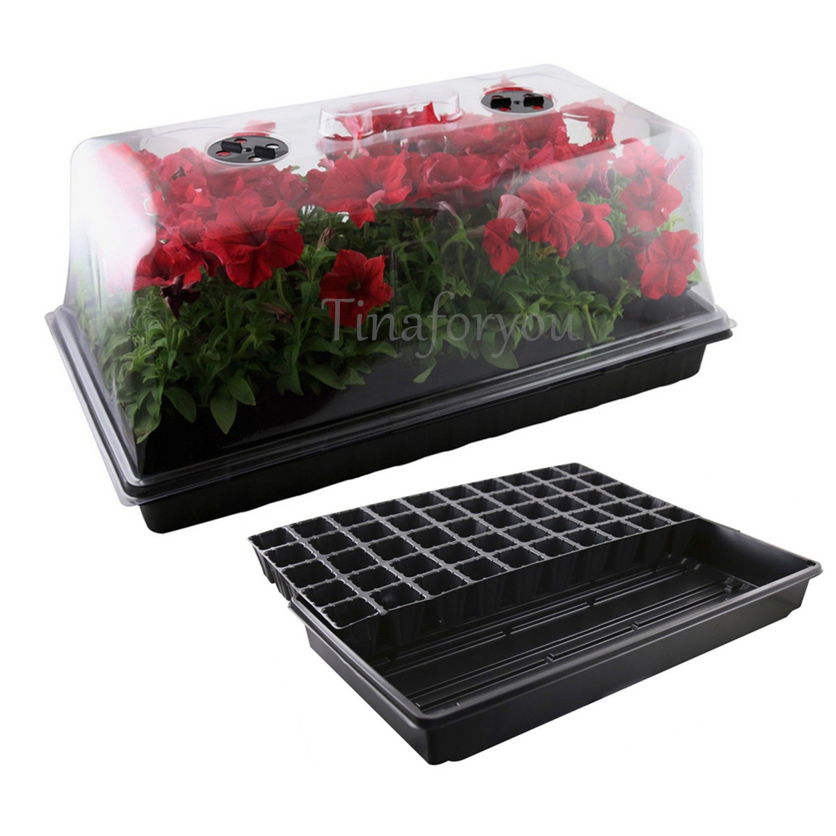 Apollo Horticulture Germination Seedling Seed Starter Tray ...
