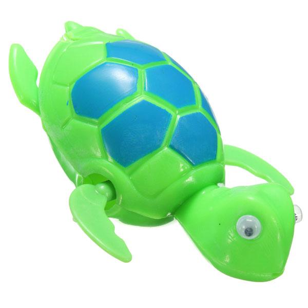 Baby frog fish