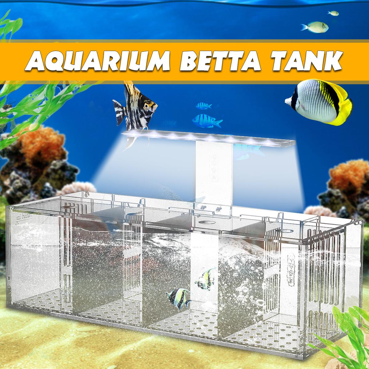 Bể Cá Betta Mini Trong Suốt Bằng Acrylic Có Đèn LED, Với Máy Bơm Nước
