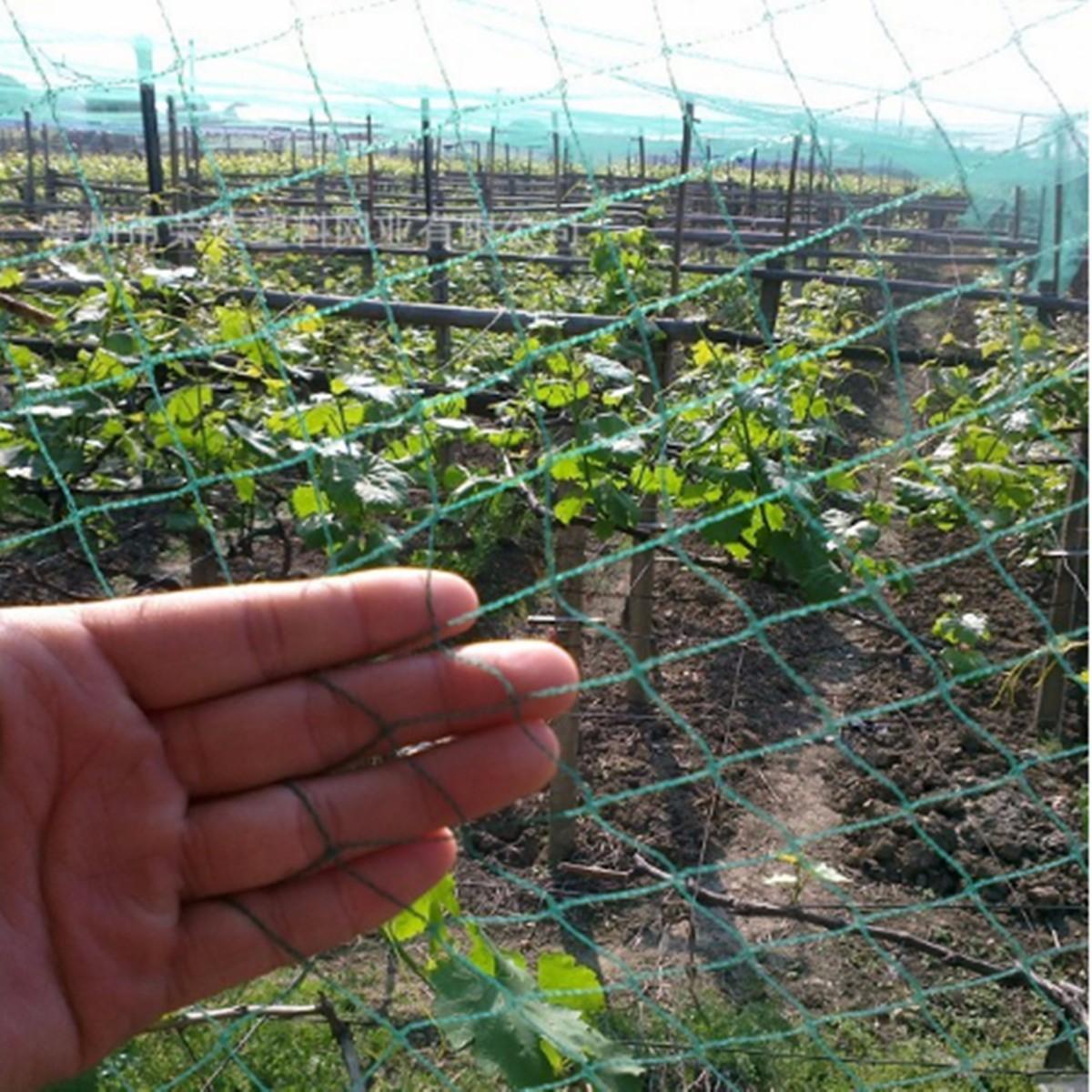 4m wide anti bird netting heavy duty superior mesh net for for Garden pool netting