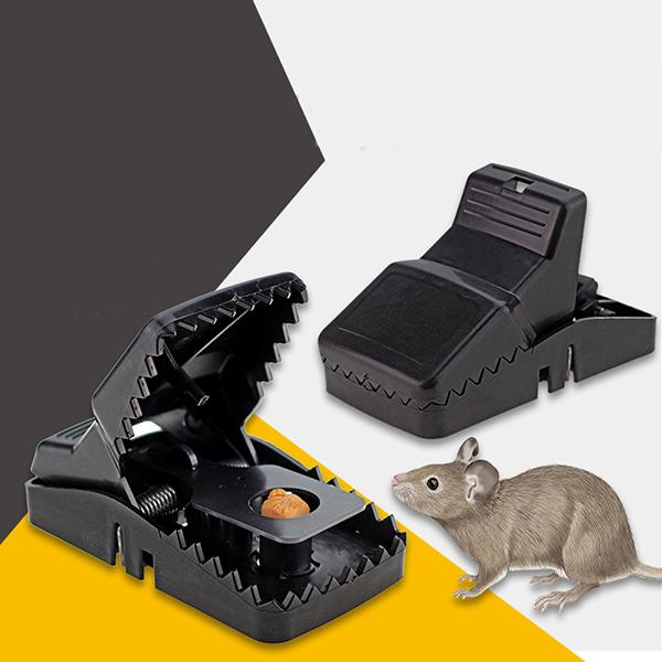 Meilleur Appat Souris souricière piège à souris - achat / vente piège nuisible maison